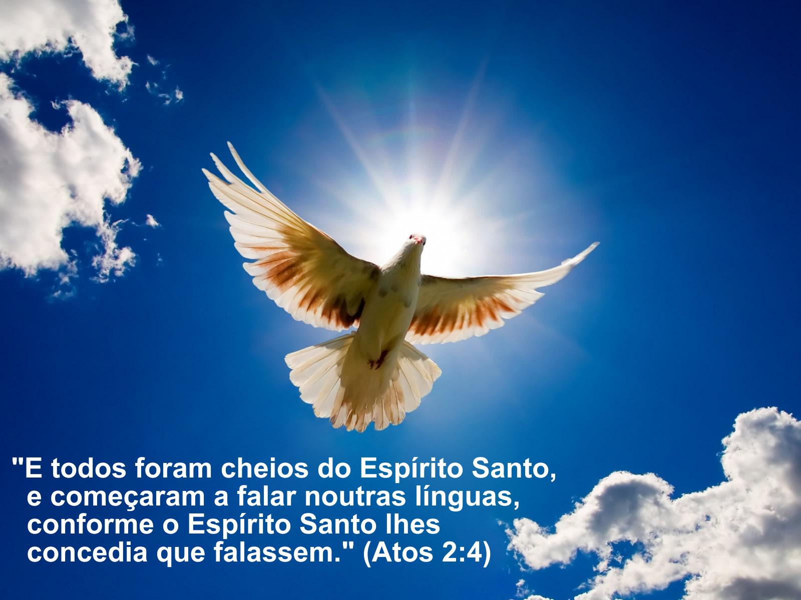 Resultado de imagem para O Espírito Santo